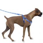 Dog Leash Harness