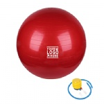 Fitness Ball Includes Foot Pump